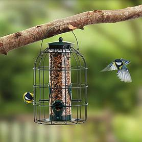 Nature's Market Seed Feeder with Squirrel Guard