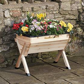 garden grow medium wooden planter with  worth of veg seed