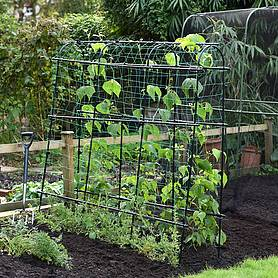 Garden Gear Pea & Bean Tunnel 1.8 x 1.8m