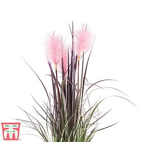 reed grass faux plant  gift