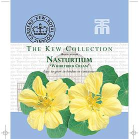 nasturtium whirlybird cream  kew collection seeds