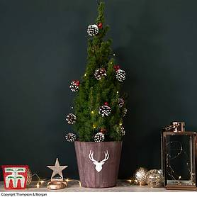 Mini Decorated Tree with Lights - Gift