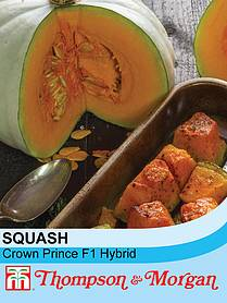 squash crown prince f hybrid winter