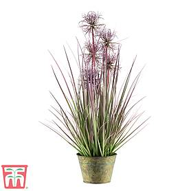 sea urchin faux plant  gift