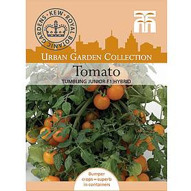 tomato tumbling junior f hybrid  kew collection seeds