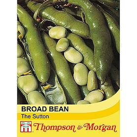 broad bean the sutton startagardentrade range