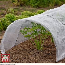 garden grow greenhouse tunnel pvc xxcm