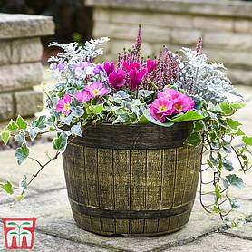 Whisky Barrel Planter