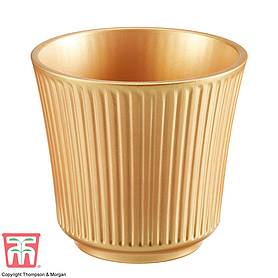 Gold Ceramic Pot