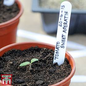 Garden Essentials Plastic Plant Labels