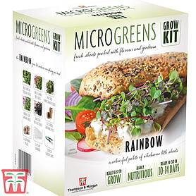 Seed Grow Kit Microgreens Rainbow