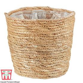Osaka Straw Basket Pot