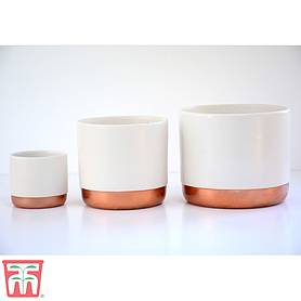 Two-tone ceramic pots - White/Rose Gold