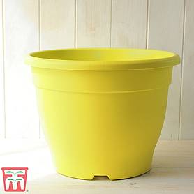 Bella Yellow Pot