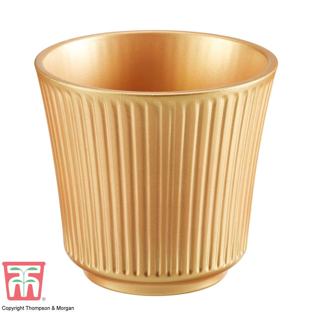 Image of Gold Ceramic Pot