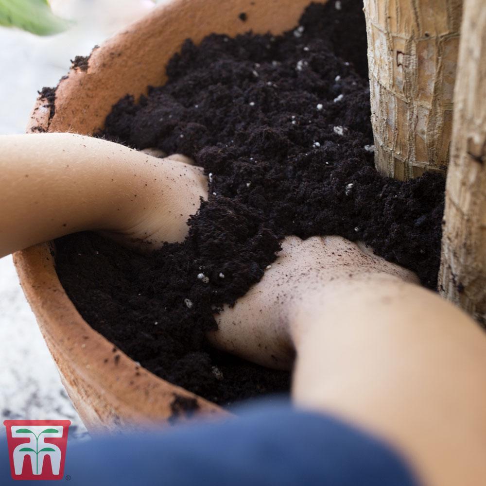 Image of Incredicompost Peat Free Houseplant