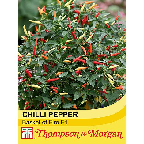 Chilli Vegetable Unwins Pictorial Packet Pepper Demon Red 6 Seeds