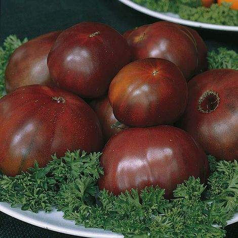 tomato 39 black russian 39 heritage seeds thompson morgan. Black Bedroom Furniture Sets. Home Design Ideas