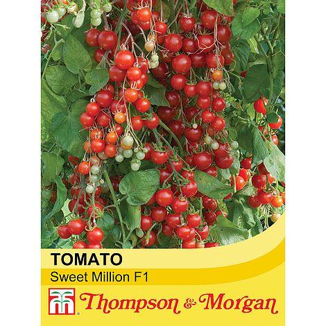 tomato 39 sweet million 39 f1 hybrid seeds thompson morgan. Black Bedroom Furniture Sets. Home Design Ideas