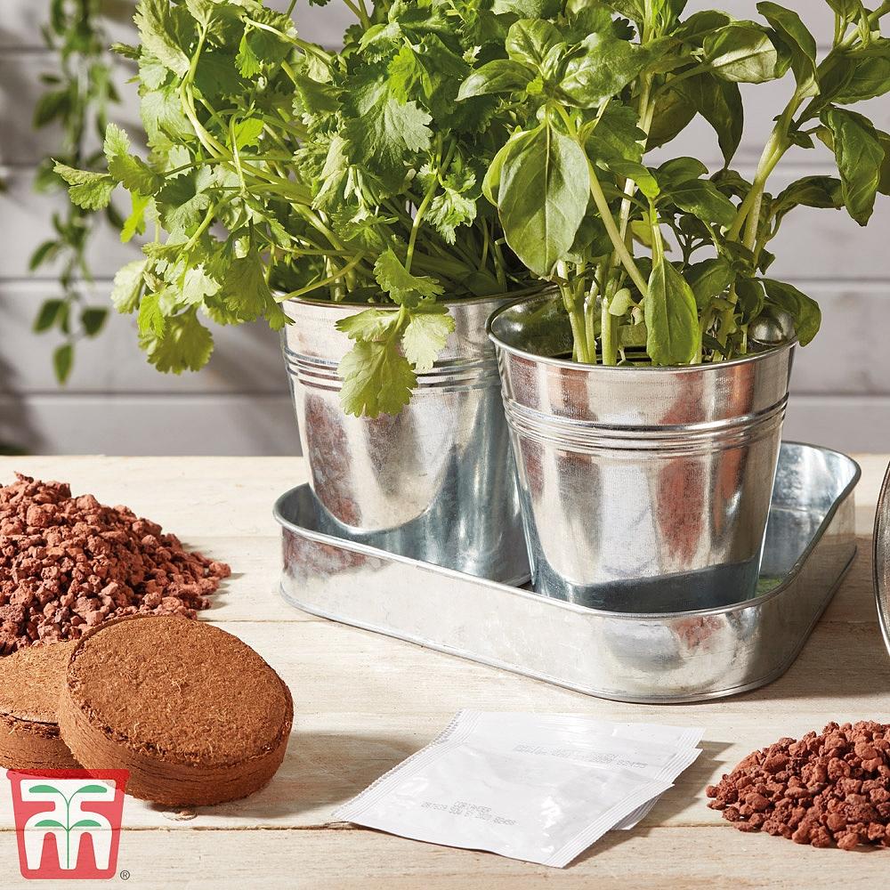 Image of Herb Trio Grow Kit