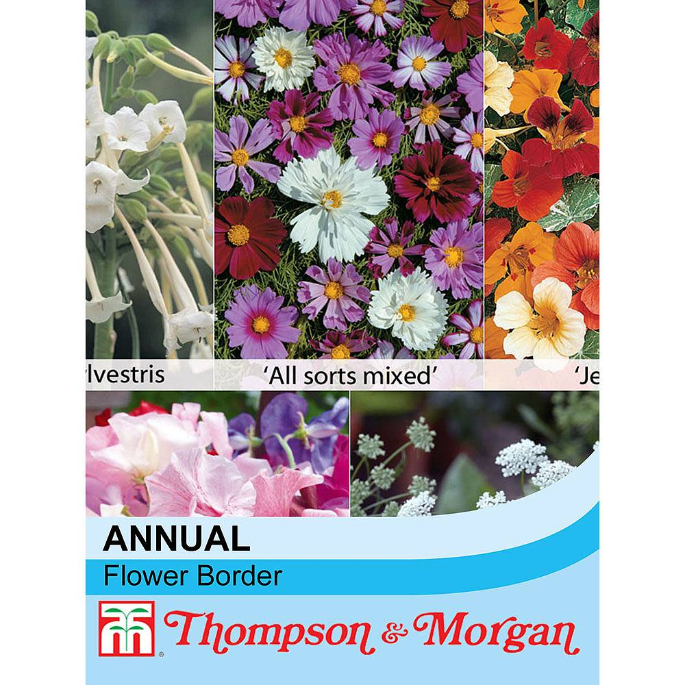 Annual Flower Border Seed Collection Thompson Morgan