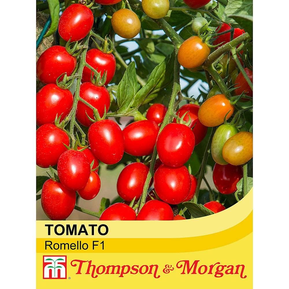 tomato 39 romello 39 f1 hybrid seeds thompson morgan. Black Bedroom Furniture Sets. Home Design Ideas
