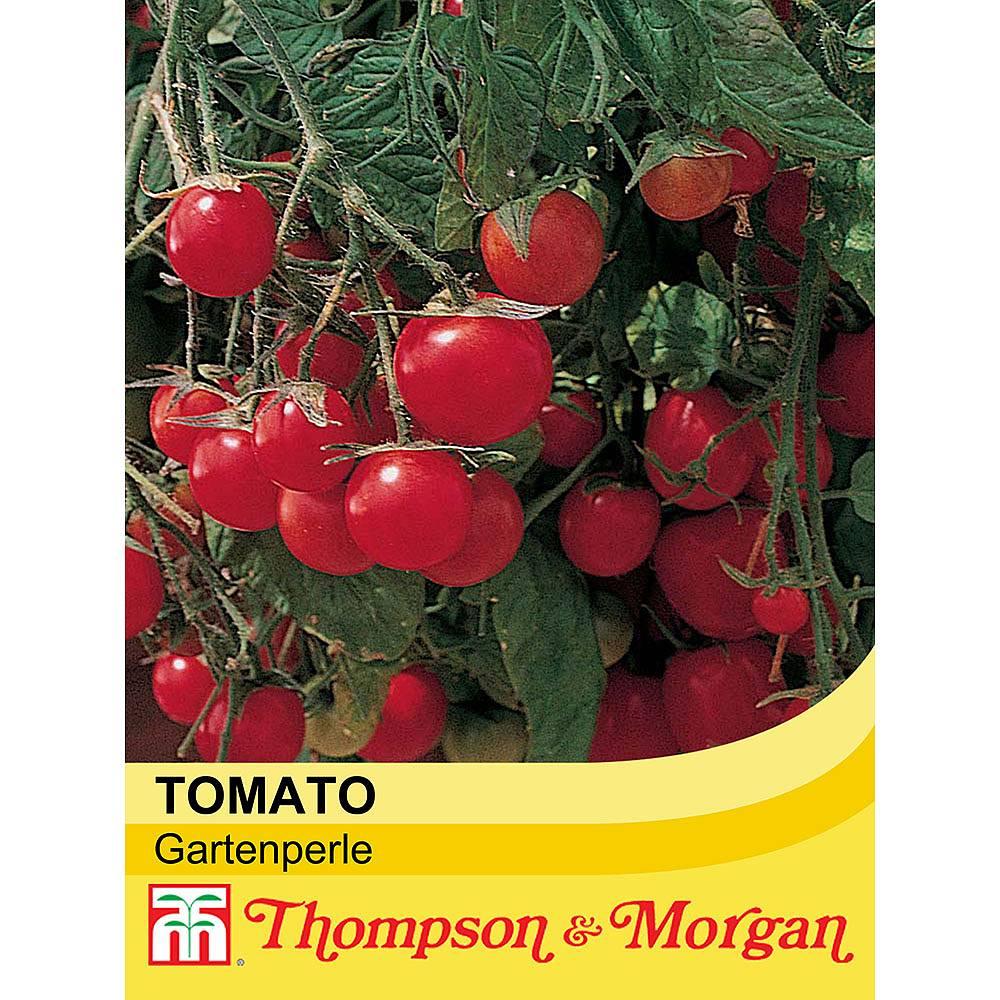 tomato 39 gartenperle 39 seeds thompson morgan. Black Bedroom Furniture Sets. Home Design Ideas