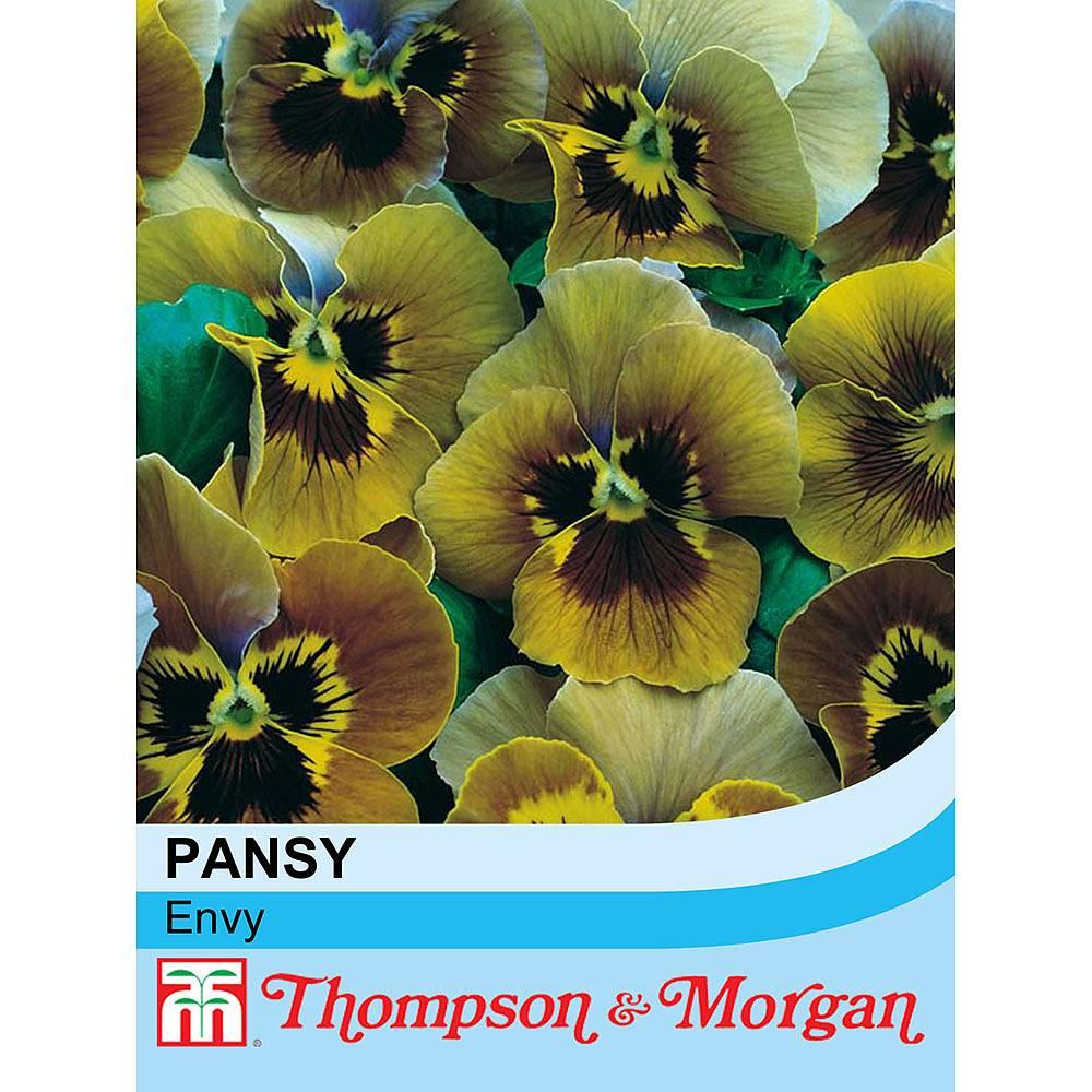 pansy 39 envy 39 seeds thompson morgan. Black Bedroom Furniture Sets. Home Design Ideas