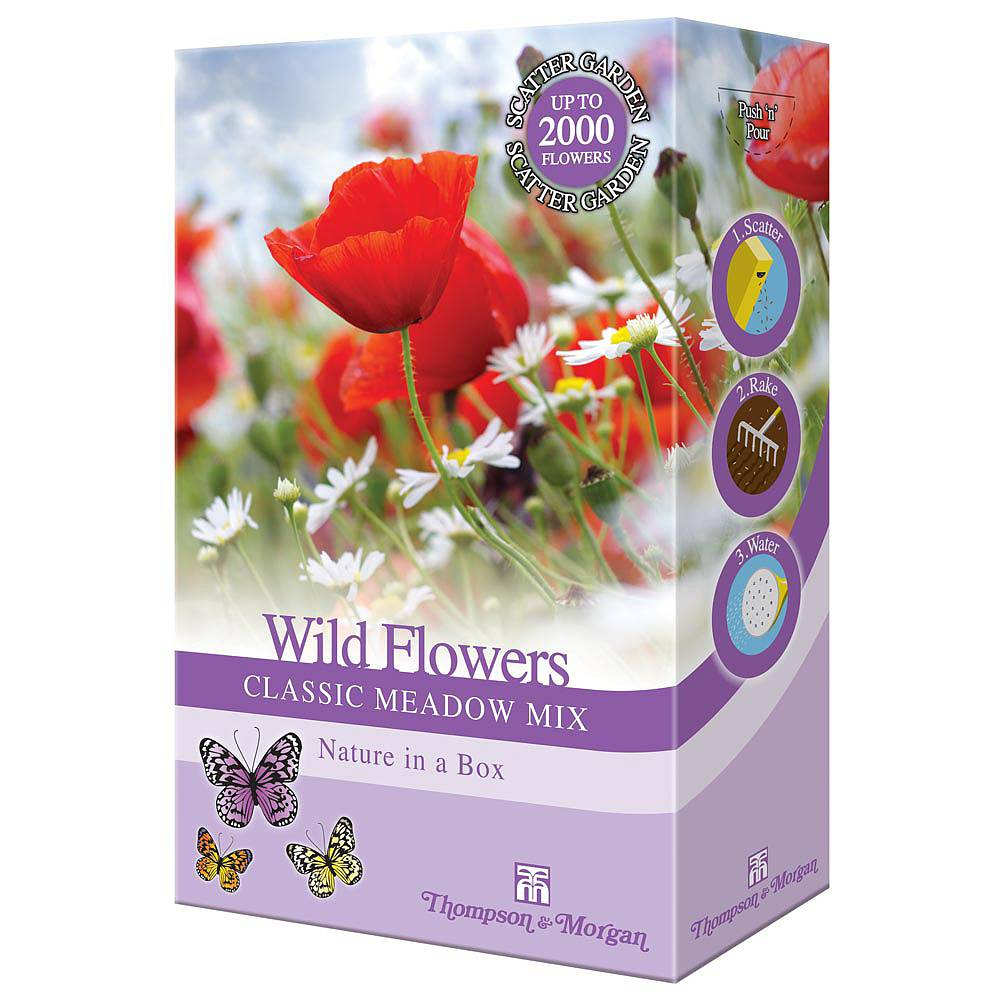 Wildflower seeds thompson morgan 5 packets for the price of 4 izmirmasajfo