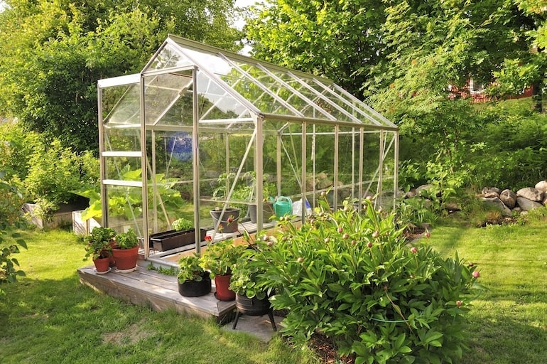 greenhouse in the sun in the garden with plant pots