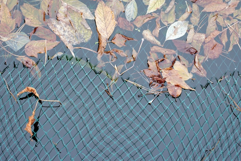 netting covering pond full of leaves