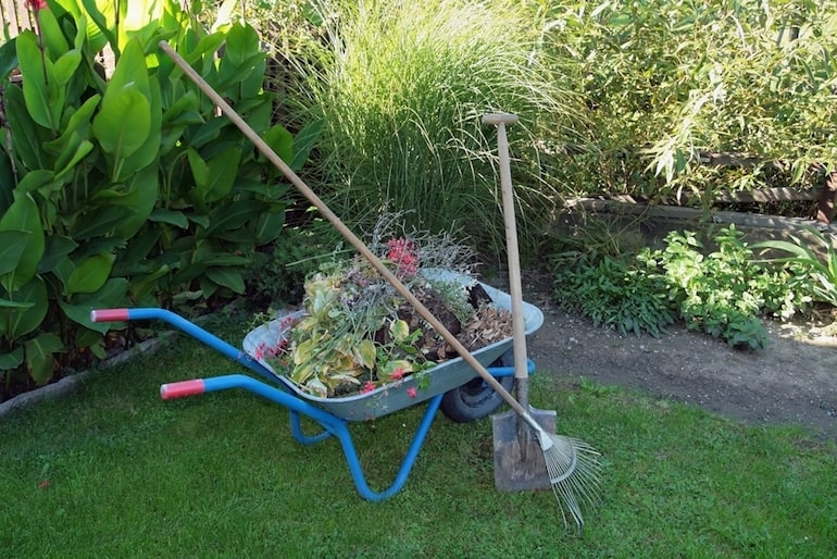 wheelbarrow full of leaves and garden flowers