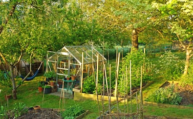 Where to position your greenhouse