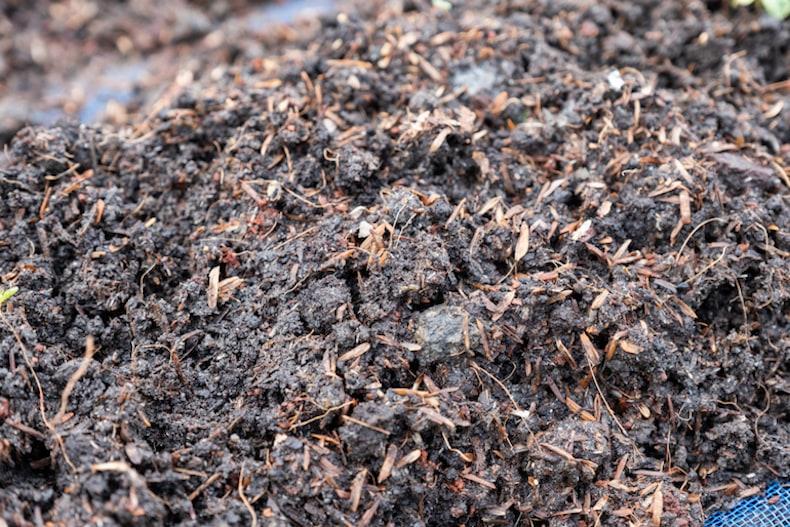 closeup of fertiliser ready for plot planting