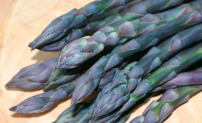 close up of purple asparagus stalks