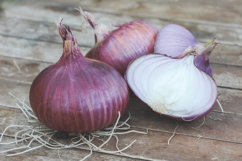 Onion 'Red Baron' from Thompson & Morgan