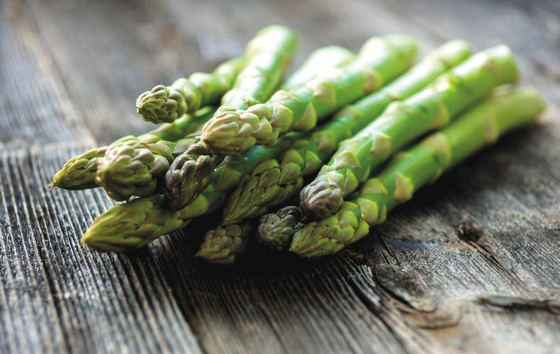 Asparagus 'Mondeo' from Thompson & Morgan