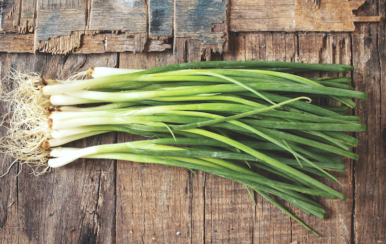 Spring onion 'White Winter Bunching' from Thompson & Morgan