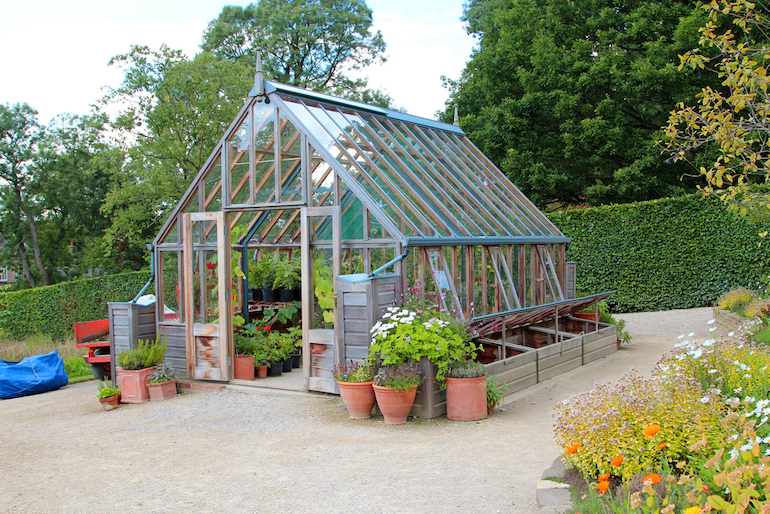 singular greenhouse with pots outside