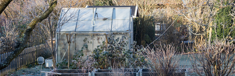 winter in the garden with frost-covered greenhouse