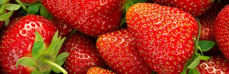What-to-plant-in-August-strawberries- Strawberry 'Elsanta' from Thompson & Morgan