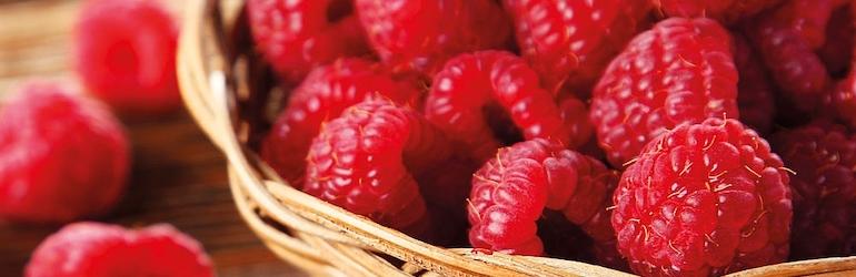 Raspberry 'Autumn Bliss' (Autumn fruiting) from Thompson & Morgan
