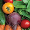Vegetable nutrition guide