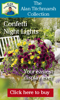 The Alan Titchmarsh Collection - Confetti Night Lights