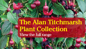 The Alan Titchmarsh Plant Collection