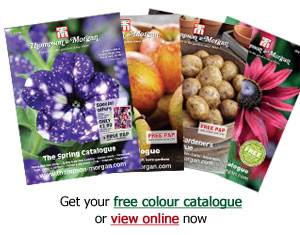 Get your free colour catalogue or view online now