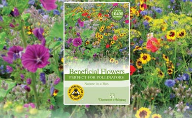 Perfect for Pollinators - Seed Scatter Gardens