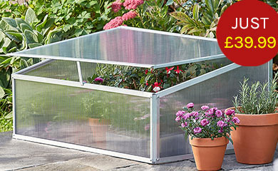 Aluminium Cold Frame with £20 of Veg Seeds