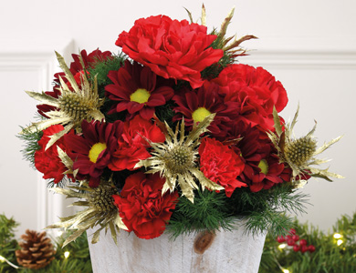 Christmas Fresh Flowers