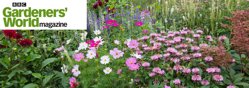 Gardeners World Offers